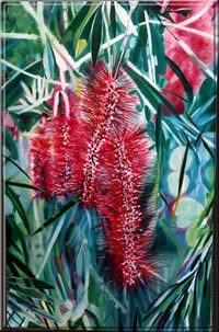 bottlebrush_fs